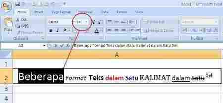 Format Teks Sel02