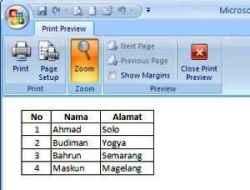 Print Area Lembar Kerja Excel 03